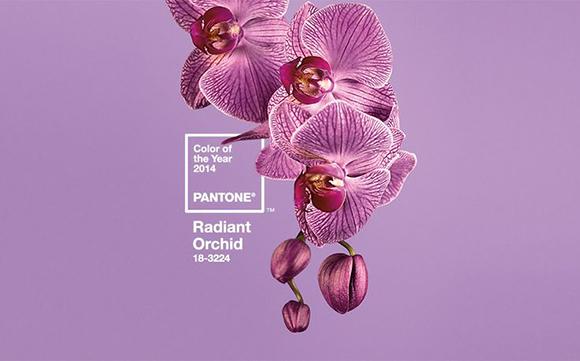 Цвет года по версии Pantone
