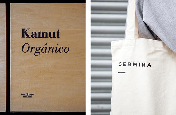 wtp-germina-preview