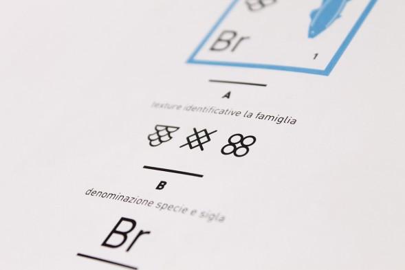 Инфографика в упаковке