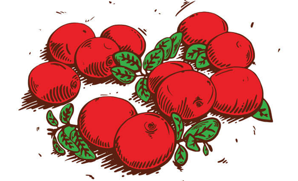 cranberry-ill
