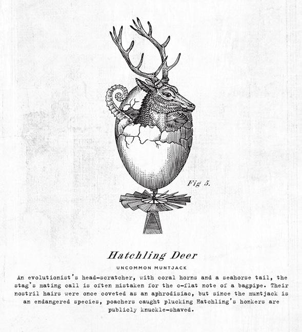 Иллюстрация винной этикетки
