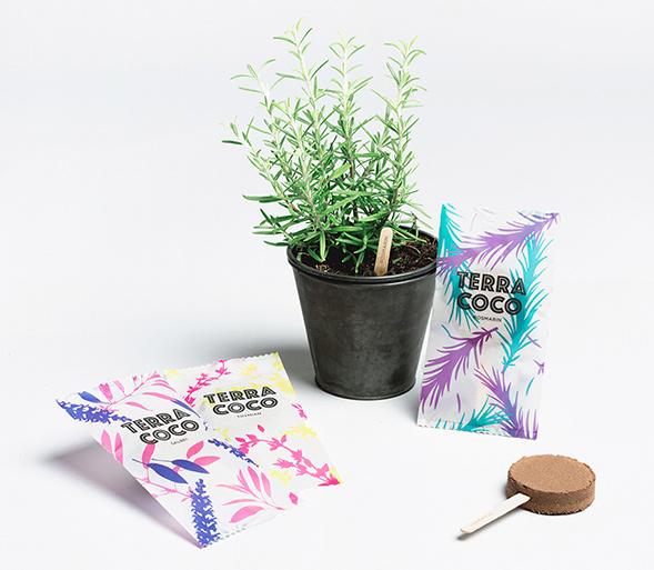 Дизайн упаковки рассады
