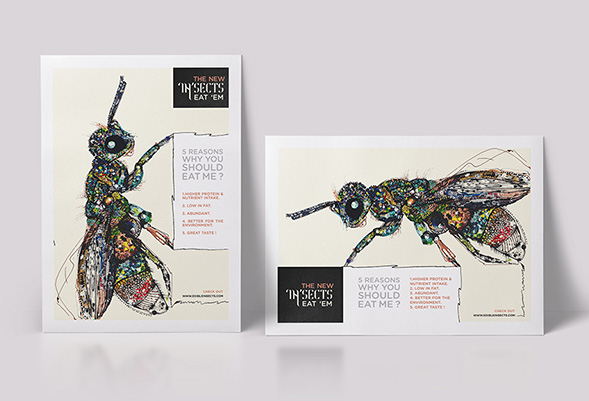 Дизайн упаковки насекомых